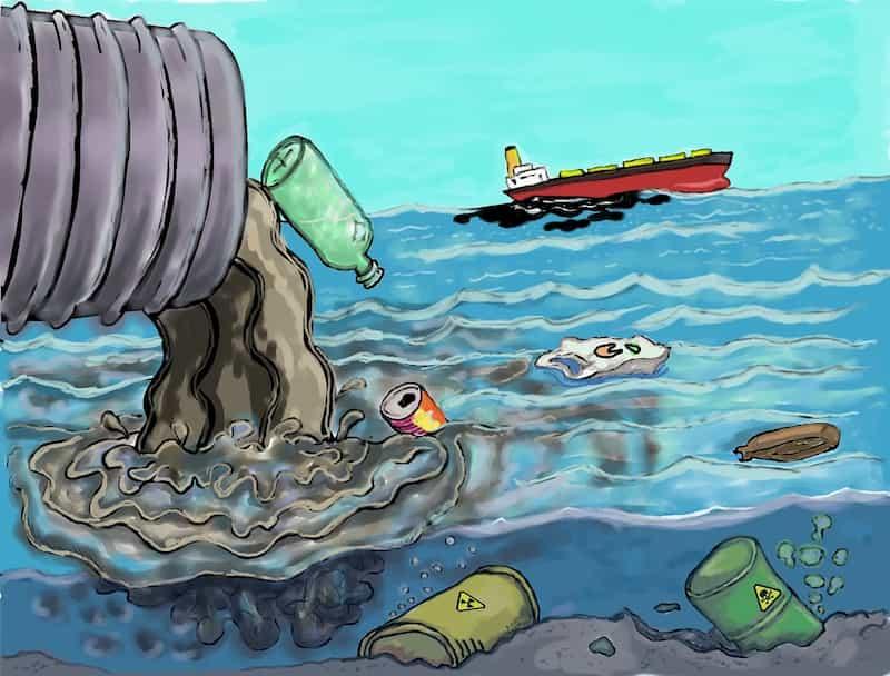 preservação do meio ambiente